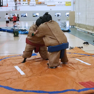 sumo-wrestling-chicago-activity-rental