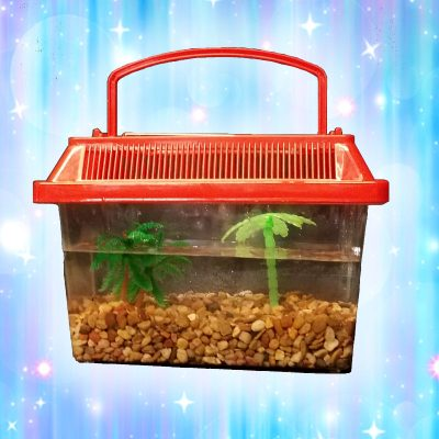 Mini-Fish-Tank-Craft-Event-Rental