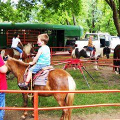 Pony-Rides-2-Chicago-Event-Rentals