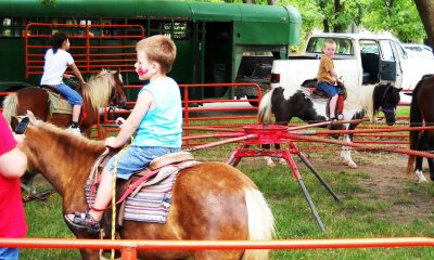 Rental Pony Rides For Carnival Themed Event