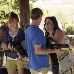 Reptile-Animal-Show-Chicao-event-rental