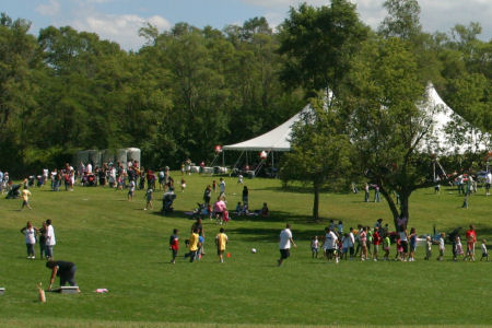 company-picnic-festivals-chicago-party-rentals